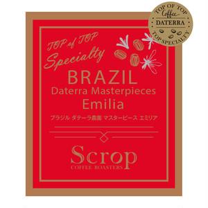 会員限定 ブラジル ダテーラ農園 エミリア マスターピースオークションロット 500g