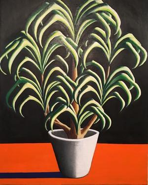 太久磨「自画像としての植物45」