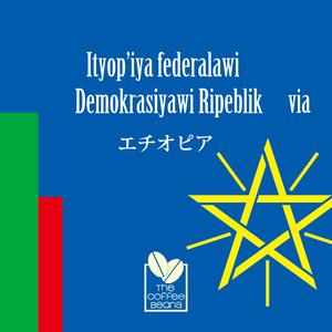 【250gパック】モカ イルガチェフェ*エチオピア