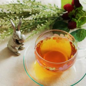 《迷ったらまずはコレ!》 Mimico's First Tea 20g
