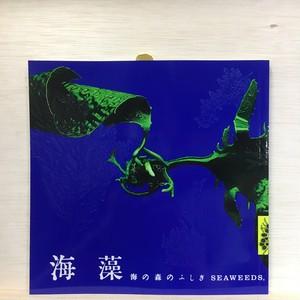 海藻 海の森のふしぎ LIXIL出版