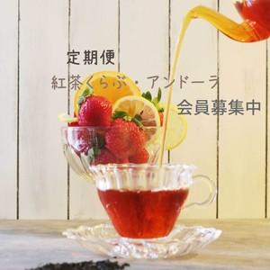 季節の紅茶の定期便『紅茶くらぶ・アンドーラ』