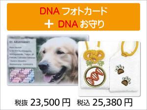 DNAフォトカード・お守り セット