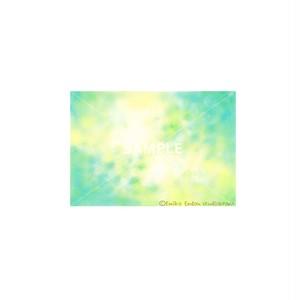 【選べるポストカード3枚セット】No.128 翠まばゆく