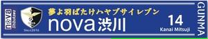 nova渋川 応援マフラータオルE