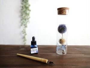 【受注生産】植物標本 Botanical Collection■スリムボトル■ルリダマアザミ