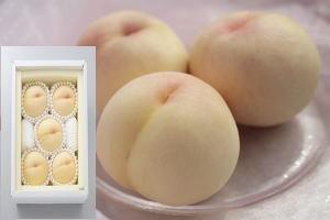 【7月下~8月上】おかやま夢白桃1.5kg ギフト