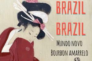 ブラジル・ブラジル! 200g コーヒー豆【シティロースト】