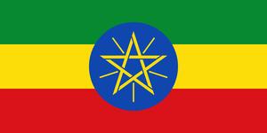 エチオピア・モカ/200g