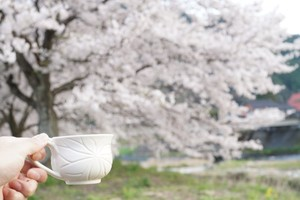 コーヒー豆おまかせ400g(100g×4袋)セット(送料込)