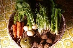 旬の野菜BOX S(5-7品)