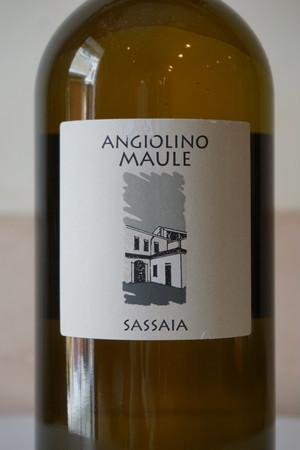 Sassaia 2010 1500ml / La Biancara( サッサイア / ラ ビアンカーラ )
