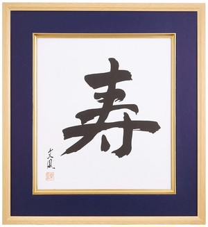 ナカバヤシ 色紙額  フ-CW-201 高級色紙額