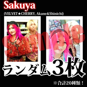 【チェキ・ランダム3枚】Sakuya(VELVET★CHERRY, Akane&Shinichi)