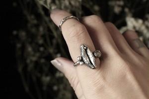 Vulva & phallus ring
