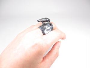 「探しもの」カラスのリング