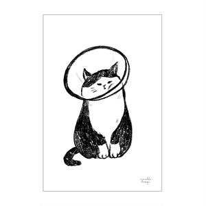 ポストカード「エリザベス」