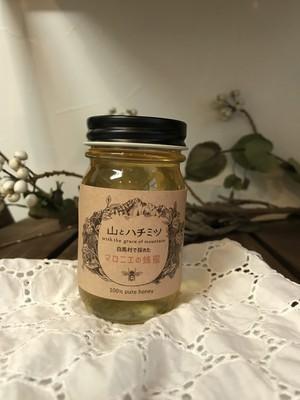 信州産ハチミツ 100g