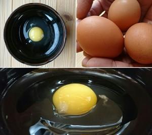 【業務用】平飼い卵 180個