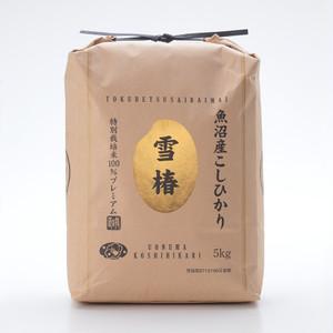【送料込】魚沼産特別栽培コシヒカリ100% 雪椿【玄米5kg×2袋】