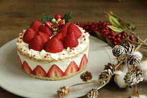 嘉山農園 苺のショートケーキ(グルテンフリー)(受取場所・汐留店、受取日・12/23)*ケーキは配送されませんのでご注意ください!*
