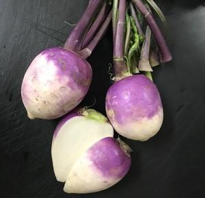 農薬・化学肥料不使用栽培 あやめ雪かぶ 1束(3玉)