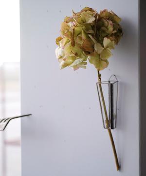 植物器:trapezium vase〚紫陽花 ナチュラル〛