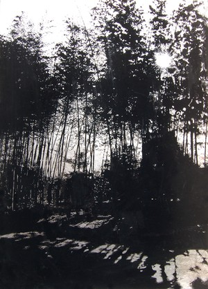 (原画)Tree X-Bamboo