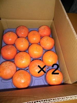 富有柿28個入り(L)ー農薬・化学肥料・除草剤不使用ー