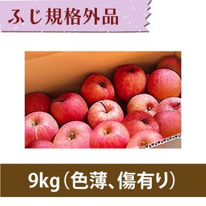 【りんご】ふじ 9kg【規格外品】