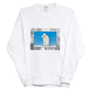 silver framed doggy sweatshirt