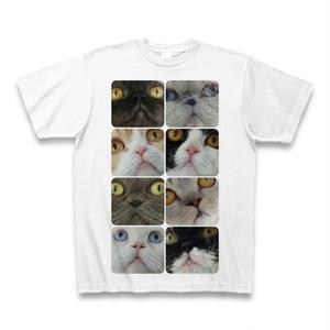 野良猫レスキュー寄金 Tシャツ【縦】送料無料