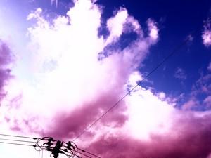 夕陽 (紫) 10