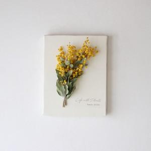"""植物キャンバスS """"真珠葉ミモザ""""【bdfa21004】ドライフラワー"""