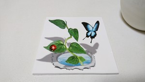3Dアートコースター【飛び出す植物&虫たち】