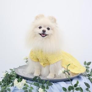 黄色コットンレース編み上げワンピース