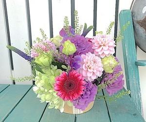 A0548) 季節のお花 / 春のフラワーギフト