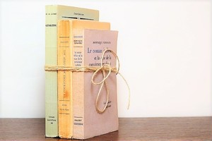 Le roman italien -3set- /display book