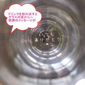 母の日 感謝 名入れ ビアグラス 420ml 毎日手紙になるグラス カーネーション 刻印 高級ギフトボックス入 感謝のメッセージ 名入れギフト 記念日 誕生日 名入れ プレゼント 贈り物 マイグラス 父の日 母の日 送料無料