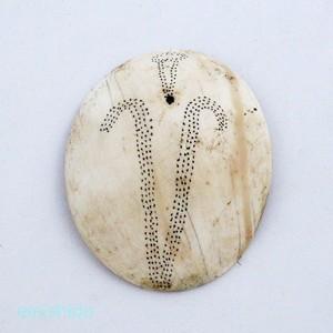 ナガ族。貝の耳飾り 0113-KA73-2