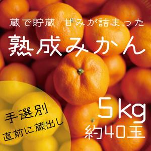山レモン1kg+熟成みかん5kgセット