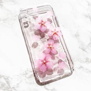 桜edition