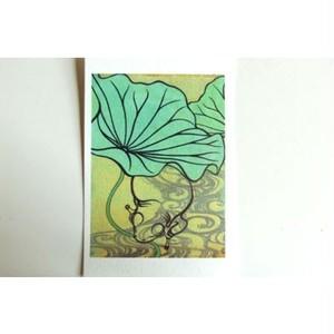 月蛙 ポストカード 『流水蓮蛙』 10008