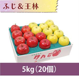 【りんご】ふじ&王林 5kg(20個)
