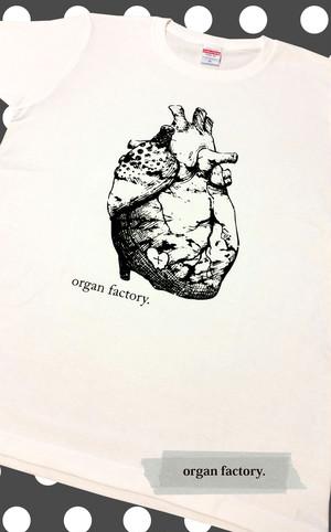 心臓T*white