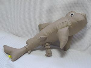 ネコザメ Bullhead shark