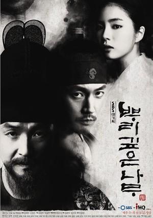 韓国ドラマ【根の深い木】Blu-ray版 全24話