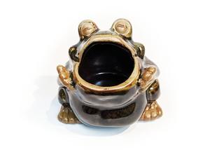 ペン立て 陶器蛙 あんぐり