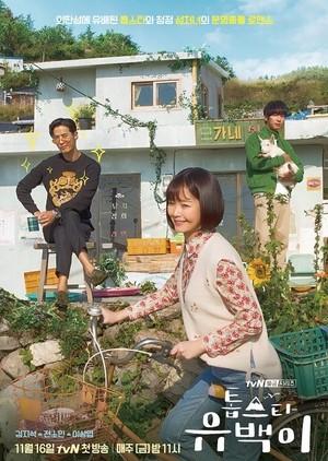 ☆韓国ドラマ☆《トップスターユベク》DVD版 全11話 送料無料!