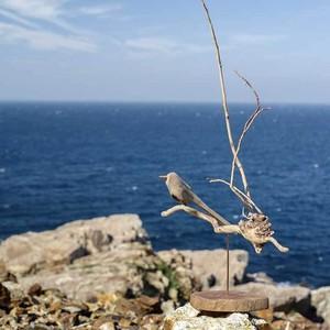 流木の鳥(Msaiz) 197